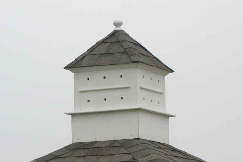 Birdhouse Cupola